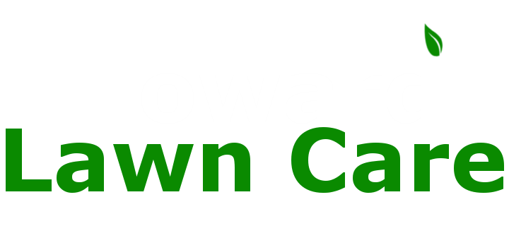 Howard lawn care providing landscaping to new kent and for Local lawn care services